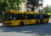 Urbino 18M